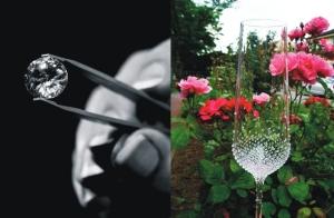 Champagnerglas 2 Stk mit Swarovski-Kristallen verziert