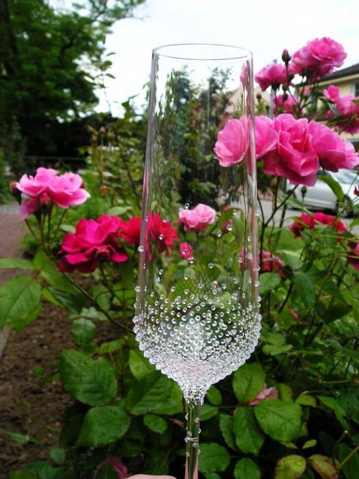 sektglas-champagnerglas